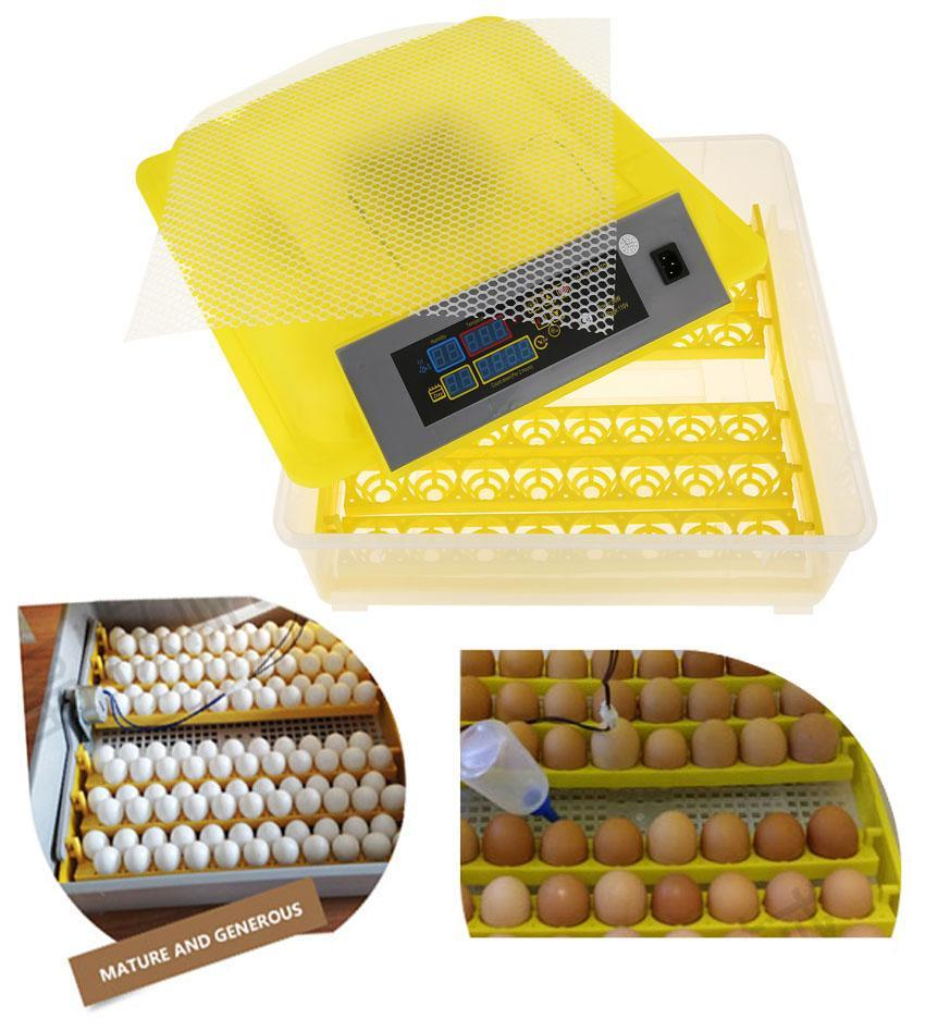incubating duck eggs instructions